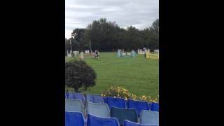 Dunroe Bridie starfinder Muliingar NPYR championships