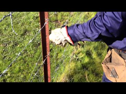 Electric Fencing - tying insulators to a star picket