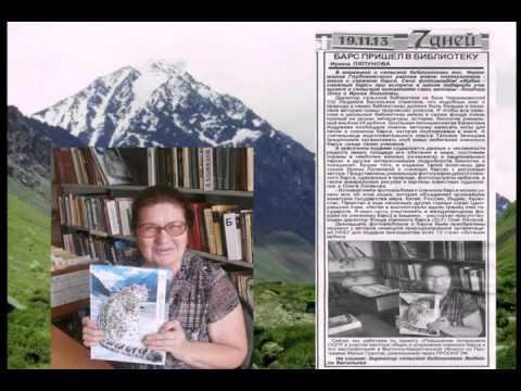 Гринпис: Сохранение снежного барса