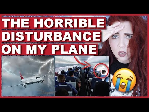 The Disturbance On My Plane | Storytime