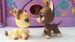 Littlest Pet Shop: Best Friends (díl #2: Leo a Angela)