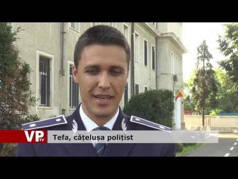 Tefa, cățelușa polițist