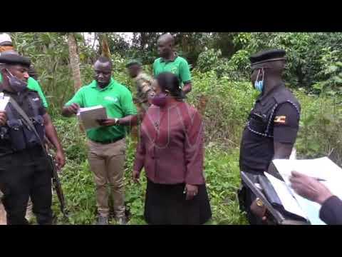 Omulamuzi arambudde ekibira kye Kagombe, enkaayana tezinnaggwa