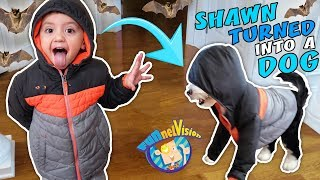 SHAWN turns into PUPPY Oreo + Secret Bat Cave Hideout (FUNnel Family Vlog)