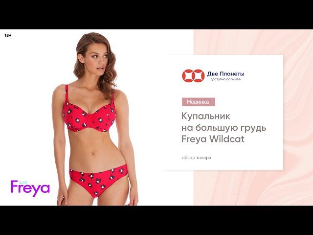Видео Купальник (бюст) FREYA WILDCAT 6880, Коралл