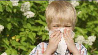 Cómo evitar el asma.