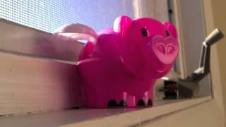 Solar Pig