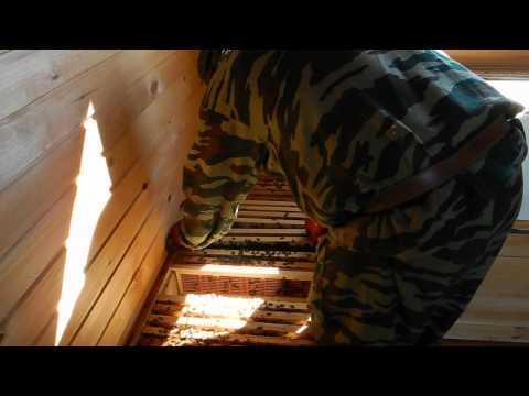 Пчеловодство в ульях лежаках