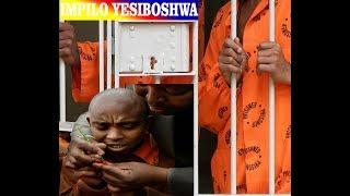 Impilo Yesiboshwa ( Tsotsi, Thug Life) Part1 || Zulu Movie || Short Movie