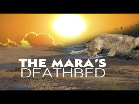 The Masai Mara death bed
