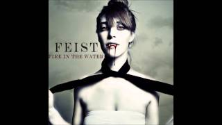 Fire In The Water: Feist