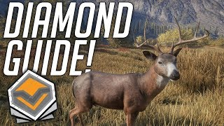 How To Find Diamonds! | theHunter: Call Of The Wild 2019