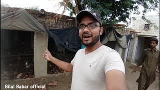desi murgi poultry farm punjab - मुफ्त ऑनलाइन