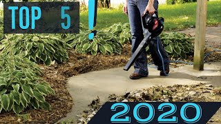 TOP 5: Best Leaf Blower in 2020 (Cordless & Electric & Budget)