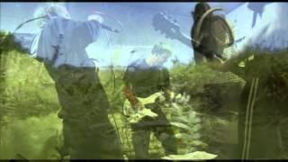 Video Krákorající pařez - Mamut