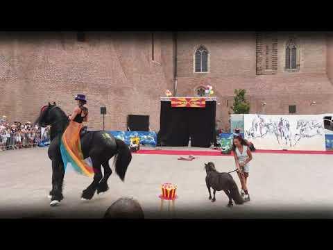 Circus Puce Maximus