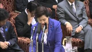 7.19参院一体改革特別委自民党世耕弘成
