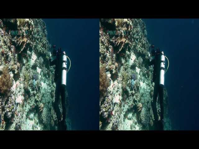 Oceandive 3d Pinkau Entertainment