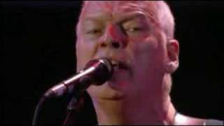 Pink Floyd - Comfortably Numb video