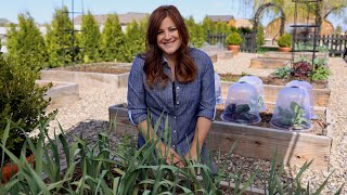 Raised Beds Guide for Beginners! 🤔👩🌾// Garden Answer
