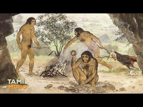 உலகின் முதல் விலங்கு எப்படி தோன்றியது? | World's First Living Being Evolution!