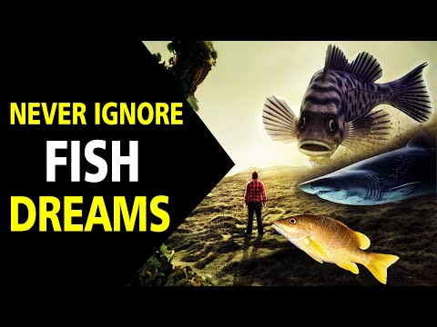 What does fish dreams meaning | dream about fish |Dream interpretation |