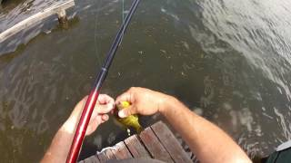 Cane pole fishing for Bluegills! #1