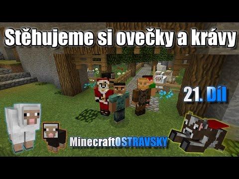 #21 | MinecraftOSTRAVSKY - Stěhujeme si ovečky a krávy | NEKONEČNÁ SÉRIE | [FULLHD]