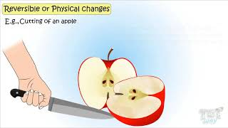 Physical and Chemical Changes-(Part-1) | Science | Grade-4,5 | TutWay |