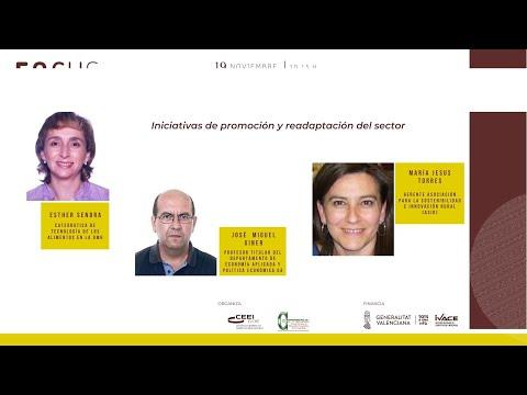 Sesión Iniciativas de promoción y readaptación del sector - Focus Pyme Vega Baja 20[;;;][;;;]