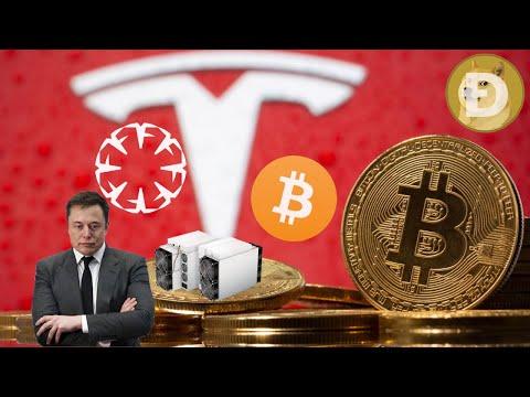 Bitcoin bookmaker