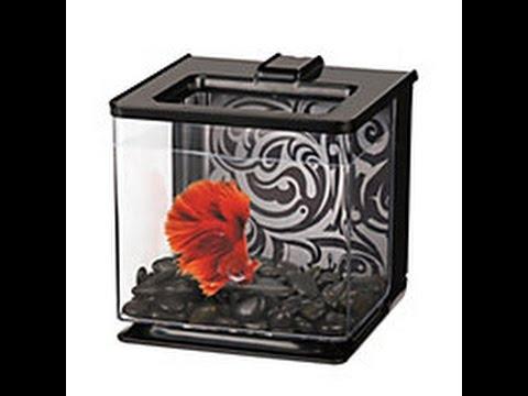 REVIEW Marina Betta EZ Care  Aquarium Kit