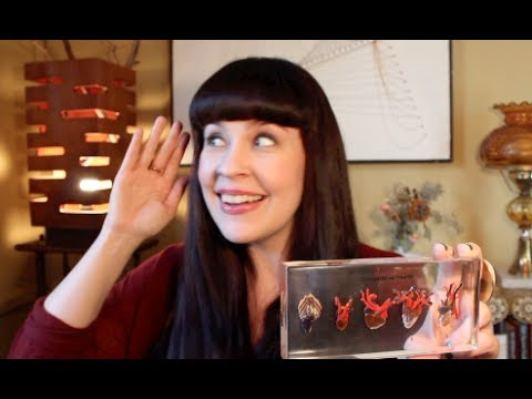 What's In a Mortician's Purse?
