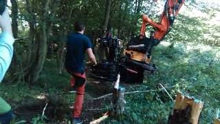 Intermacato Tiger Cut Tree Shear With Bunching Arm
