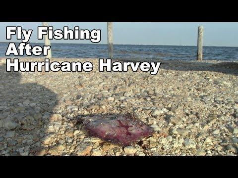 Fishing after Hurricane Harvey!