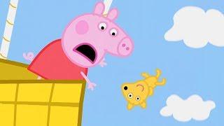 Peppa Pig Świnka Peppa po Polsku | gdzie jest Teddy  | Kompilacja klipów | Bajki Po Polsku