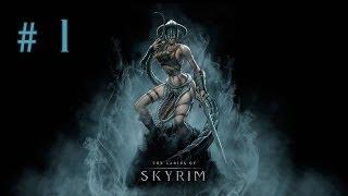 Девичье прохождение игры The Elder Scrolls V: Skyrim. Часть 1.