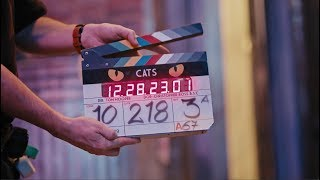Cats (2019) Video
