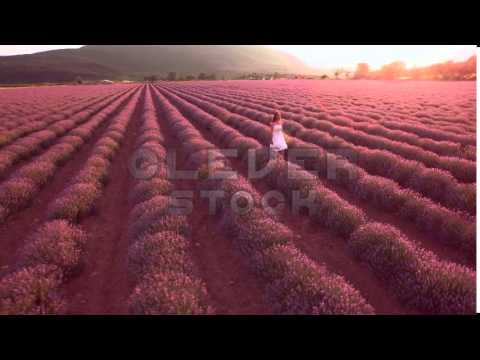 Beautiful Young Innocent Woman White Dress Walking Through Lavender Field Beauty Sunset Innocence