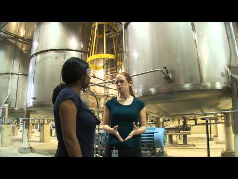 Chemical Engineer - Profiles Of Scientists And Engineers