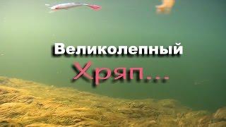 Воблер rapala x-rap jointed shad xjs13