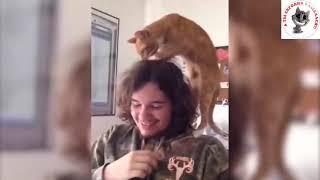 Приколы с животными #21