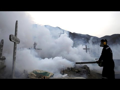 Video Zika Virus: Are Climate & Ecological Factors Driving Spread of Viral Diseases in the Americas?