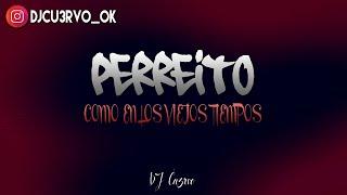PERREITO (REMIX) ✘ DJ Cu3rvo