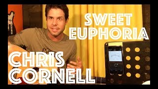 Guitar Lesson: How To Play Sweet Euphoria By Chris Cornell
