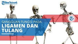 Muskuloskeletal, Gangguan Fungsi pada Ligamen, Otot, Saraf, Sendi dan Tendon, serta Tulang Belakang