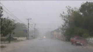Rainy Road Trips in Jamaica