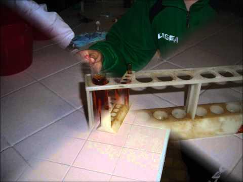 La mummia curiamo la psoriasi