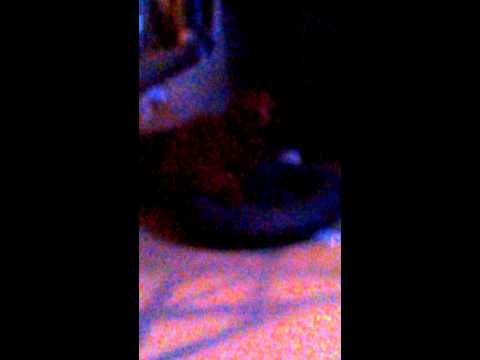 Sophia humping the pillow-_- ▶0:24