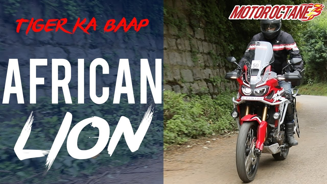 Motoroctane Youtube Video - Tiger ka Baap - 600kms ride on the African Lion bike | Vlog | Hindi | MotorOctane